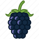 blackberry, food, forest, fruit, garden, vitamins, yumminky icon