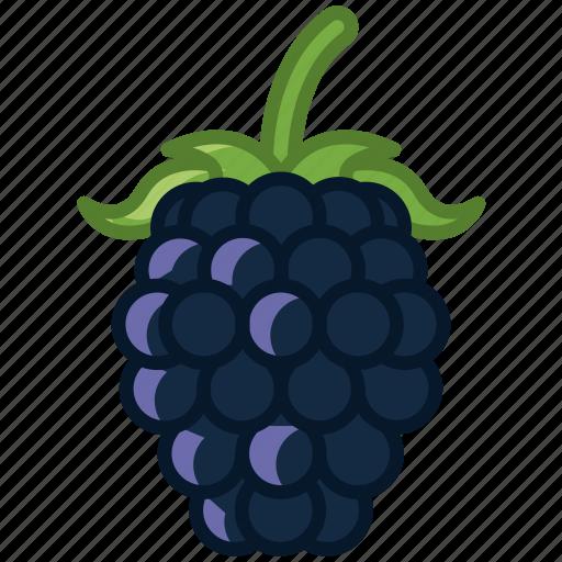 blackberry, food, forest, fruit, garden, vitamins, yumminky icon
