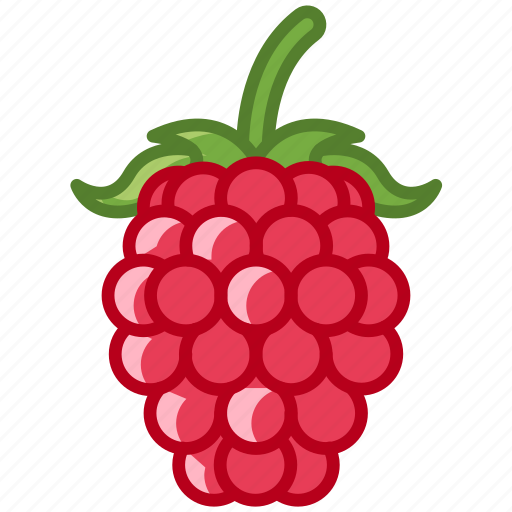 fit, food, fruit, garden, raspberry, vitamins, yumminky icon
