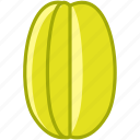 fit, food, fruit, karambola, tropical, vitamins, yumminky icon