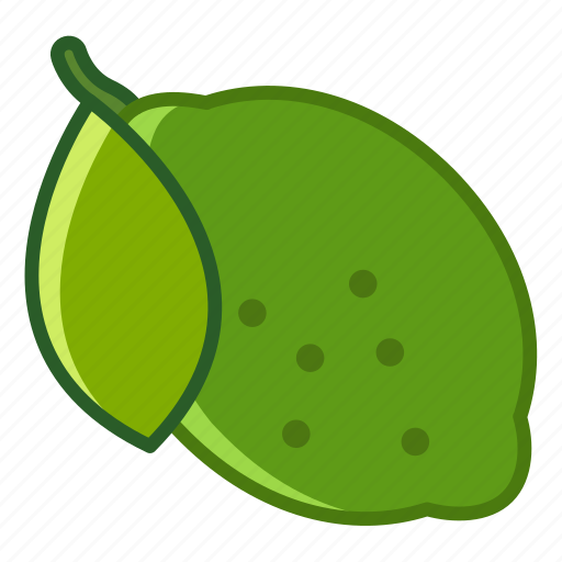 fit, fruit, leaf, lime, tropical, vitamins, yumminky icon