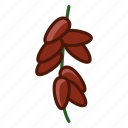 date, date-tree, fit, fruit, tropical, vitamins, yumminky icon