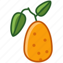 fit, food, fruit, kumkvat, tropical, vitamins, yumminky icon