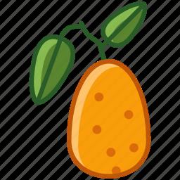 fit, food, fruit, kumkvat, tropical, vitamins, yumminky icon