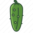 bio, cucumber, garden, gherkin, vegetable, vitamins, yumminky icon