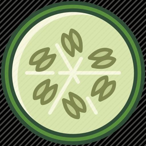 bio, cucumber, garden, gherkin, vegetable, vitamins, yumminky icon