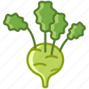 bio, food, garden, kohlrabi, vegetable, vitamins, yumminky icon