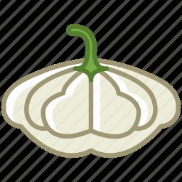 bio, garden, gourd, patizon, vegetable, vitamins, yumminky icon