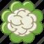 bio, cauliflower, food, garden, vegetable, vitamins, yumminky icon