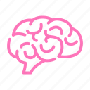 brain, neurology, neuroscience, organ icon