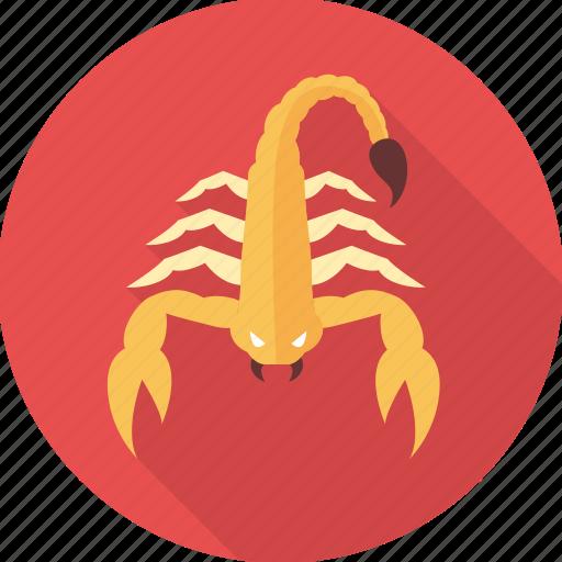astrology, astrology sign, horoscope, scorpio, sign, zodiac, zodiac sign icon
