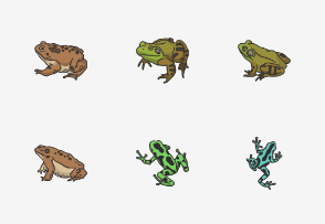 Amphibians - Colored