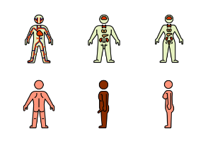 Body / Colors