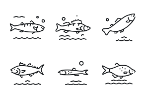 Fish - Highlight Monochrome