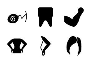 Glyph Organs of the human body