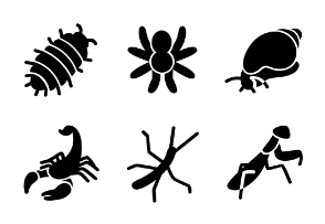 The most popular terrarium insects in glyph style